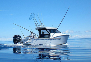 cabin-cruiser-pesca-deportiva