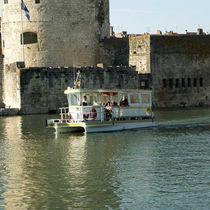 Barco turístico catamarán / eléctrico