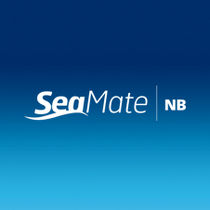 Recubrimiento antifouling para barco profesional / para buques mercantes / autopulimentante / multiusos