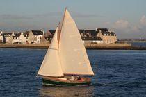 Velero day-sailer / clásico / con popa abierta / con quilla retráctil