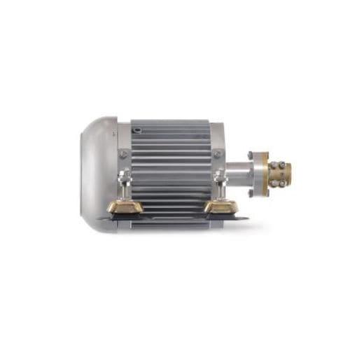 motor eléctrico intraborda