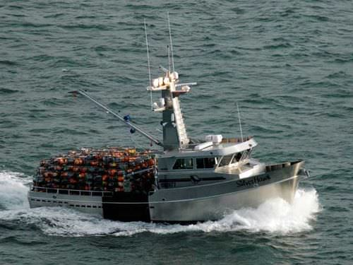 barco de pesca profesional / intraborda / de aluminio