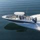 barco open fueraborda / bimotor / de pesca deportiva / 8 personas máx.