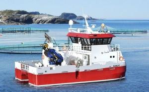 Barcos, buques y equipos marítimos