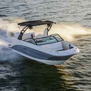 deck-boat fueraborda