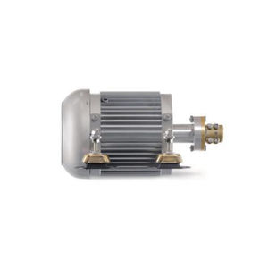 motor intraborda / recreo / profesional / eléctrico