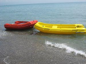 bote auxiliar fueraborda