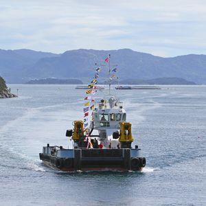 barco profesional barco de trabajo