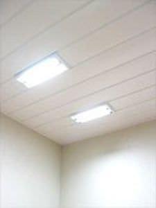 panel para techo de buque / de acero
