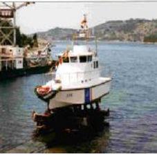 barco profesional embarcación piloto / intraborda / diésel