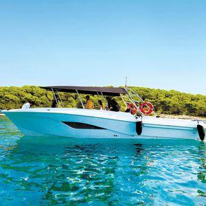 barco profesional barco turístico / intraborda