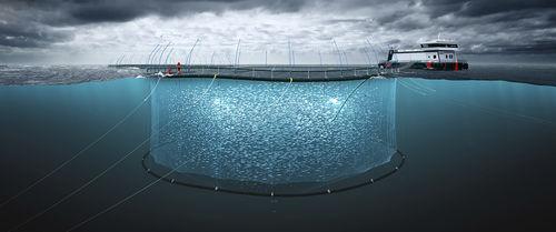 red para la acuicultura