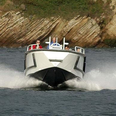 barco profesional barco de trabajo / stern-drive / diésel / de aluminio