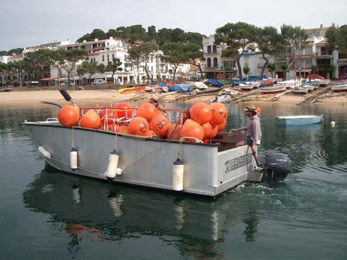 barco de trabajo / fueraborda / de aluminio