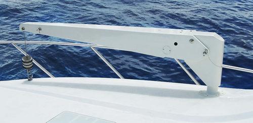 pescante para yate / hidráulico