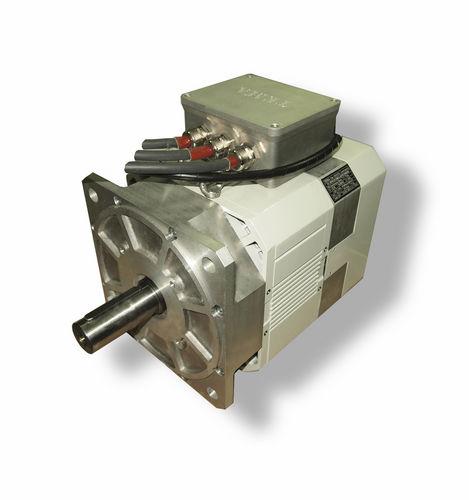 motor recreo / profesional / intraborda / eléctrico