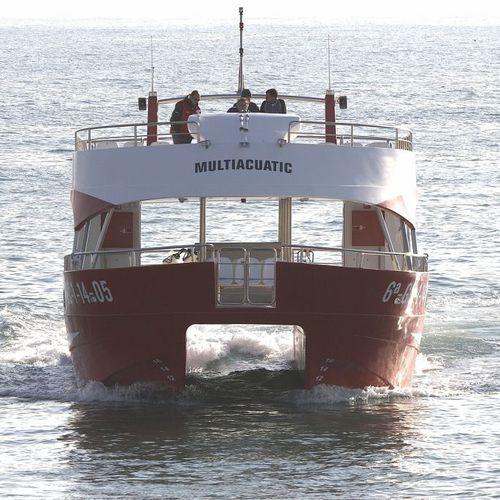 barco profesional barco turístico / catamarán / intraborda