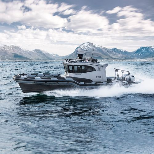 embarcación neumática fueraborda / intraborda / bimotor / trimotor