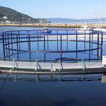 jaula de pesca para la acuicultura / de plástico / de PEAD / redonda