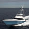 yate a motor de pesca deportiva / convertible / con fly / casco de planeo