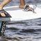 tabla de kitesurf con foil / de freeride