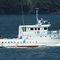buque de investigación haliéutica
