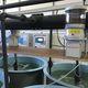 sistema de alimentación para la acuicultura / de cinta / con tolva