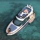 barco cabinado intraborda / bimotor / con hard-top / con fly