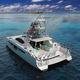 barco cabinado catamarán / intraborda / diésel / bimotor