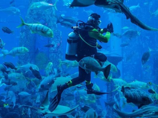 Bahrein planea un nuevo centro de deportes acuáticos