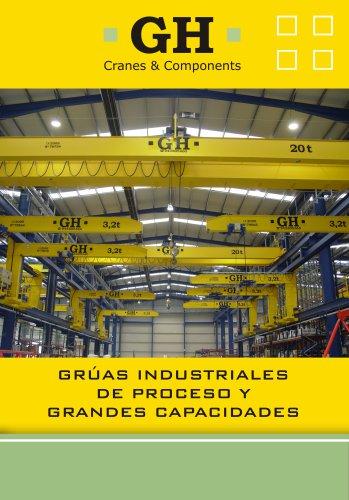Grúas industriales y de proceso