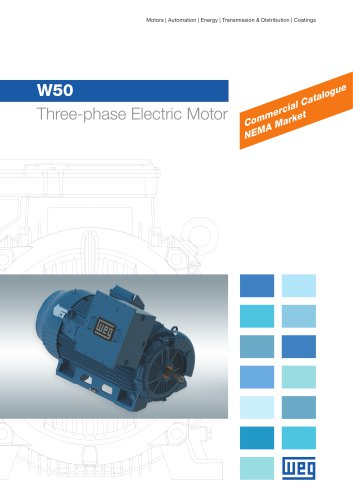 W50 - Three-phase Electric Motor