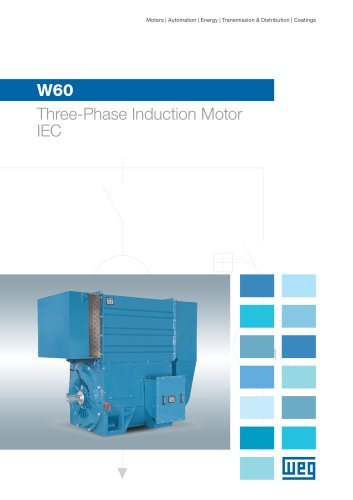 W60 Three-Phase Induction Motor - IEC