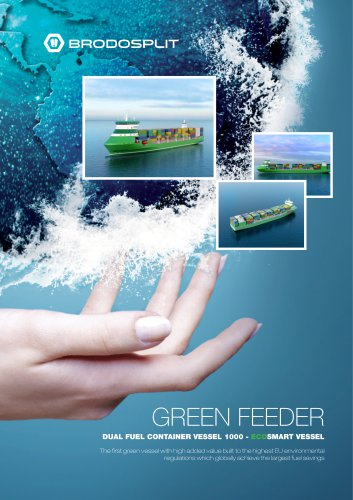Dual Fuel Container Vessel 1000