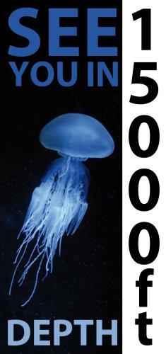 NORIYSY 4 Deep Sea